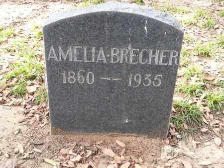 BRECHER, AMELIA - Los Angeles County, California | AMELIA BRECHER - California Gravestone Photos