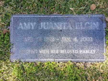 ELGIN, AMY - Los Angeles County, California | AMY ELGIN - California Gravestone Photos
