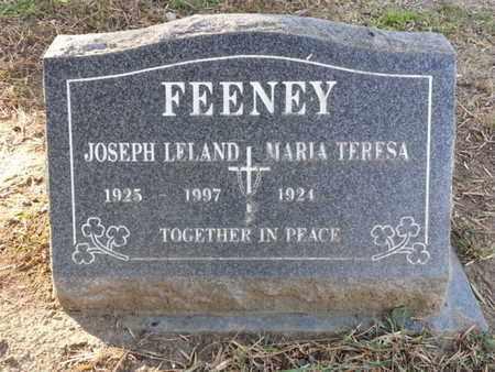 FEENEY, MARIA TERESA - Los Angeles County, California   MARIA TERESA FEENEY - California Gravestone Photos
