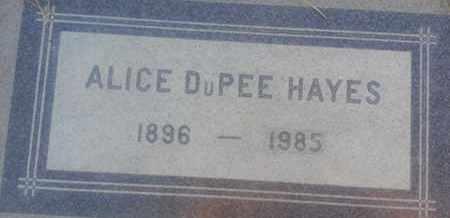 DUPEE HAYES, ALICE - Los Angeles County, California | ALICE DUPEE HAYES - California Gravestone Photos