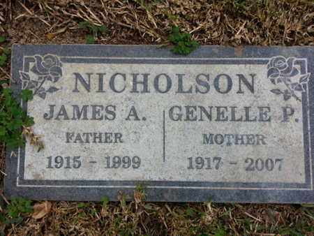 NICHOLSON, JAMES A. - Los Angeles County, California | JAMES A. NICHOLSON - California Gravestone Photos