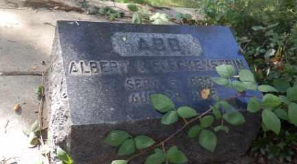 FLECKENSTEIN, ALBERT - Sacramento County, California | ALBERT FLECKENSTEIN - California Gravestone Photos
