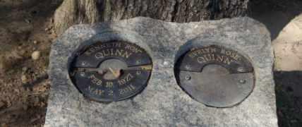 QUINN, EVELYN - Sacramento County, California | EVELYN QUINN - California Gravestone Photos