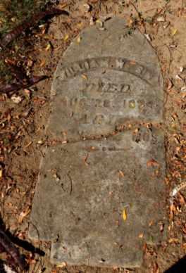SIMMS, WILLIAM - Sacramento County, California | WILLIAM SIMMS - California Gravestone Photos