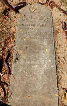 WILDER, ABBY - Sacramento County, California   ABBY WILDER - California Gravestone Photos