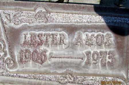 AMOS, LESTER - Sutter County, California | LESTER AMOS - California Gravestone Photos