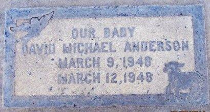 ANDERSON, DAVID MICHAEL - Sutter County, California | DAVID MICHAEL ANDERSON - California Gravestone Photos