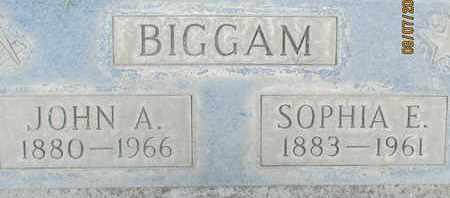 BIGGAM, SOPHIA ELIZABETH - Sutter County, California   SOPHIA ELIZABETH BIGGAM - California Gravestone Photos