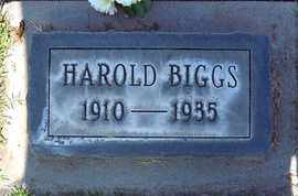 BIGGS, HAROLD M. - Sutter County, California | HAROLD M. BIGGS - California Gravestone Photos