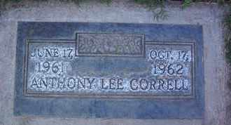 CORRELL, ANTHONY LEE - Sutter County, California | ANTHONY LEE CORRELL - California Gravestone Photos