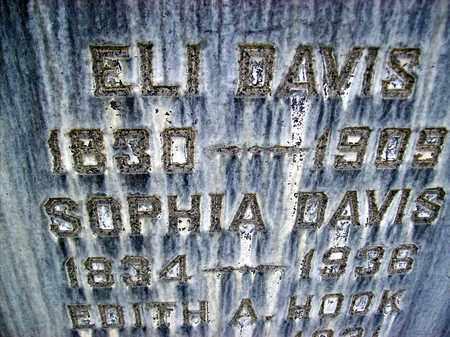 DAVIS, ELI - Sutter County, California   ELI DAVIS - California Gravestone Photos