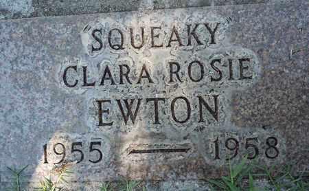 EWTON, CLARA ROSEANNE - Sutter County, California | CLARA ROSEANNE EWTON - California Gravestone Photos