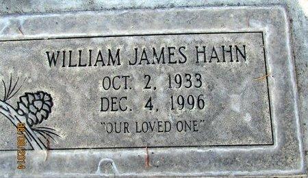 HAHN, WILLIAM JAMES - Sutter County, California | WILLIAM JAMES HAHN - California Gravestone Photos