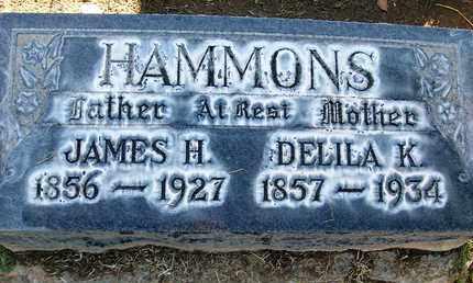 HAMMONS, JAMES HENRY - Sutter County, California | JAMES HENRY HAMMONS - California Gravestone Photos