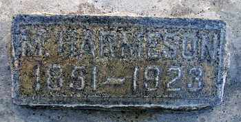 HARMESON, M. - Sutter County, California   M. HARMESON - California Gravestone Photos