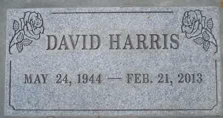HARRIS, DAVID TILGHAM - Sutter County, California | DAVID TILGHAM HARRIS - California Gravestone Photos