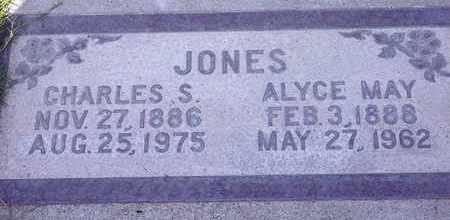 JONES, CHARLES SYLVESTER - Sutter County, California | CHARLES SYLVESTER JONES - California Gravestone Photos