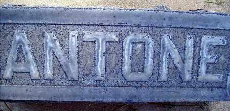 VAGEDES, ANTONE - Sutter County, California | ANTONE VAGEDES - California Gravestone Photos