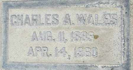 WALES, ABRAHAM CHARLES - Sutter County, California | ABRAHAM CHARLES WALES - California Gravestone Photos