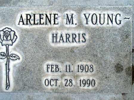 YOUNG-HARRIS, ARLENE M. - Sutter County, California | ARLENE M. YOUNG-HARRIS - California Gravestone Photos
